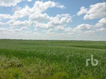 SK/RM OF CALDER 241 SE 25-25-33 W1 160 +/- ACRES ON TITLE